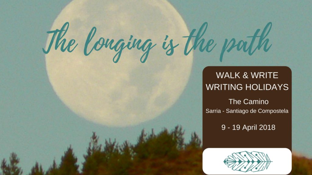 Walk & Write The Camino